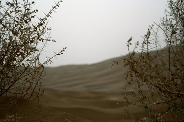 Taklimakan Desert